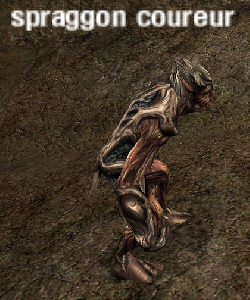 image de la creature spraggon coureur