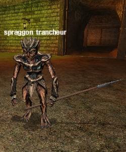 image de la creature spraggon trancheur
