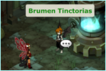 Brumen Tinctorias