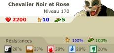 Chevalier Noir et Rose