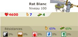 Rat Blanc