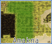 Zone de coupe d'Amakna