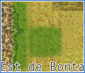 Zone de coupe de Bonta