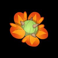 Fleur de Cactiflore