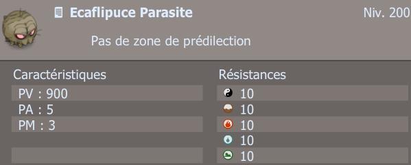 ecaflipuce parasite
