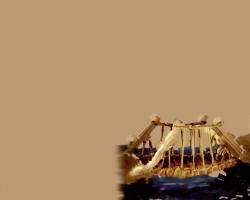 Fond d'écran Dofus