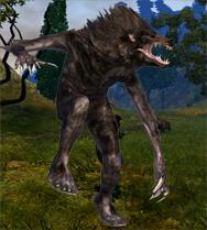Les Bêtes Sombres