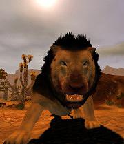 Les lions de Kheshatta