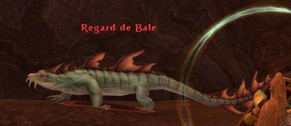 Regard de Bale