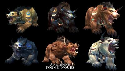 Forme d'Ours des Taurens