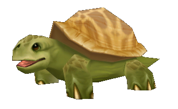 Bip-bip la tortue